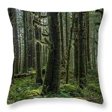 Rain Forest Of Golden Ears Throw Pillow