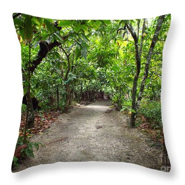 Rain Forest Road Throw Pillow