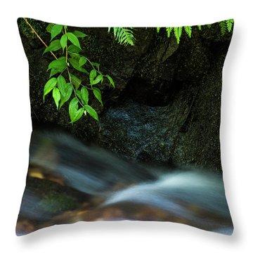 Rain Forest Stream Throw Pillow