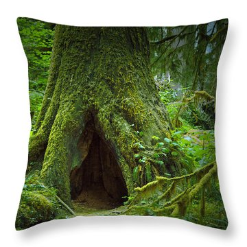 Rain Forest Walk 2 Throw Pillow