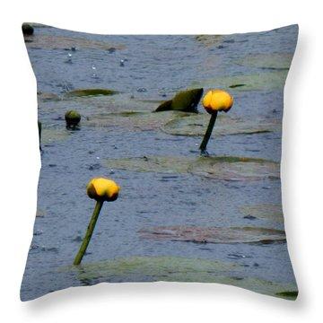 Rain In The Swamp Throw Pillow
