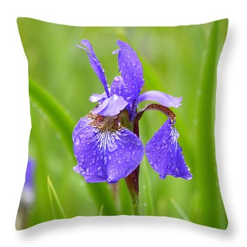 Throw Pillow featuring the photograph Rain Kissed by Lila Fisher-Wenzel