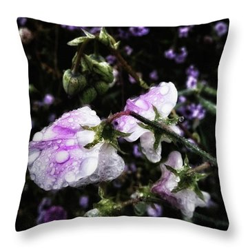 Throw Pillow featuring the photograph Rain Kissed Petals. This Flower Art by Mr Photojimsf