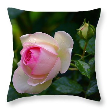 Throw Pillow featuring the photograph Rain-kissed Rose by Byron Varvarigos