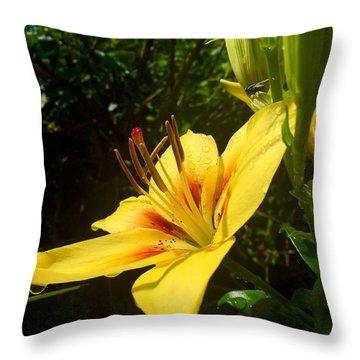 Rain Kissed Tiger Lily Throw Pillow