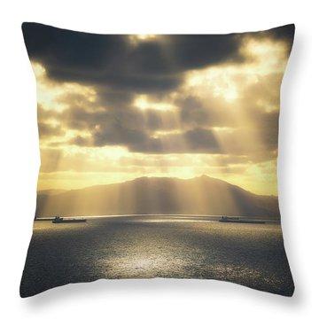 Rain Of Light Throw Pillow