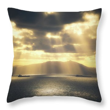 Rain Of Light Throw Pillow