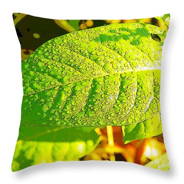 Rain On Leaf Throw Pillow by Craig Walters