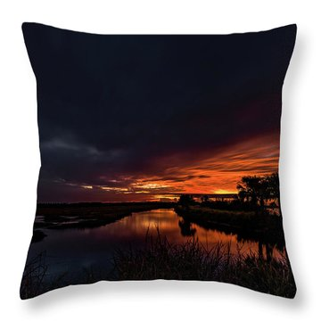 Rain Or Shine -  Throw Pillow