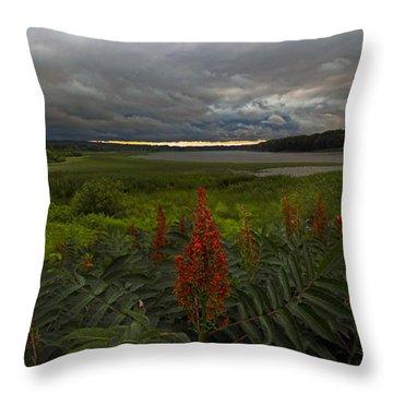 Rain Over The Mohawk Throw Pillow
