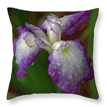 Rain-soaked Iris Throw Pillow