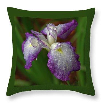 Rain-soaked Iris Throw Pillow