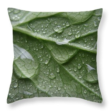 Rain Splashed Snow On The Mountain Throw Pillow