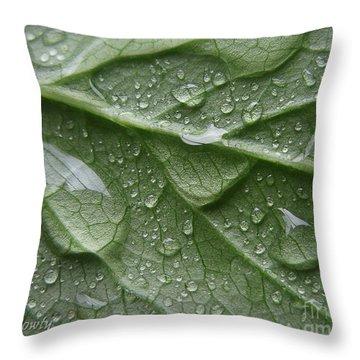 Rain Splashed Snow On The Mountain Throw Pillow
