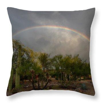 Throw Pillow featuring the photograph Rain Then Rainbows by Dan McManus