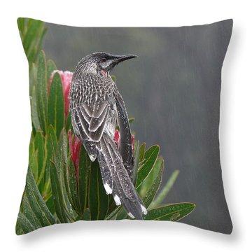 Rainbird Throw Pillow