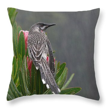 Rainbird Throw Pillow