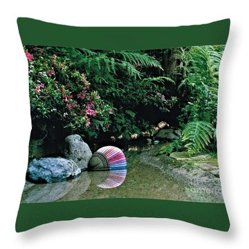 Rainbow 2 Throw Pillow by Delores Malcomson