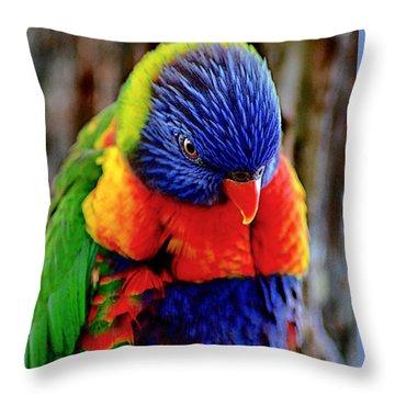 Rainbow Throw Pillow by Adam Olsen