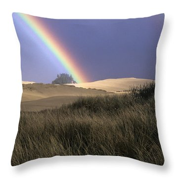 Rainbow And Dunes Throw Pillow