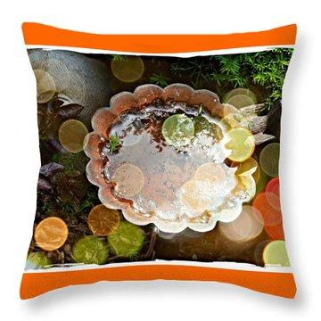 Rainbow Birdbath Throw Pillow