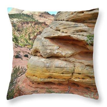 Rainbow Butte Throw Pillow