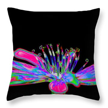Rainbow Chicory Throw Pillow by Richard Patmore