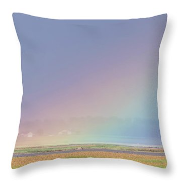 Rainbow Close Up Throw Pillow