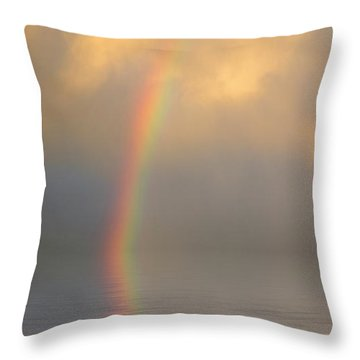 Rainbow Dream Throw Pillow by Jerry McElroy