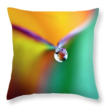 Rainbow Drop Throw Pillow by Crystal Wightman