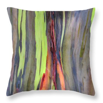 Rainbow Eucalyptus 13 Throw Pillow