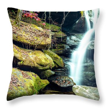 Throw Pillow featuring the photograph Rainbow Falls At Dismals Canyon by David Morefield