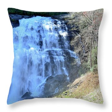 Rainbow Falls In Gorges State Park Nc 02 Throw Pillow by Bruce Gourley