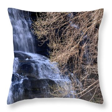 Rainbow Falls In Gorges State Park Nc 03 Throw Pillow by Bruce Gourley
