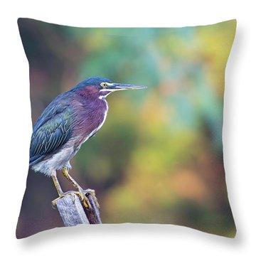 Rainbow Heron Throw Pillow