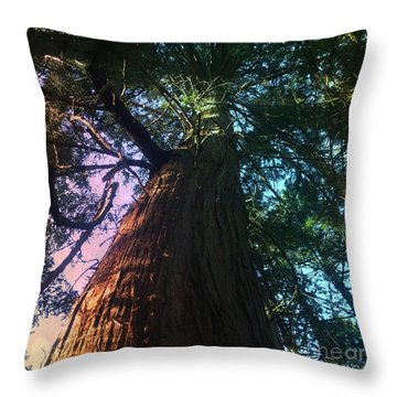 Rainbow Hue Heaven Throw Pillow by Kim Prowse