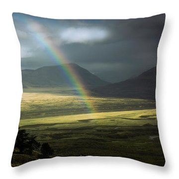 Rainbow In The Valley Throw Pillow by Andrew Matwijec