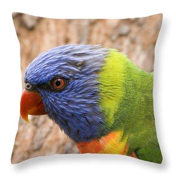 Rainbow Lorikeet Throw Pillow by Mike  Dawson