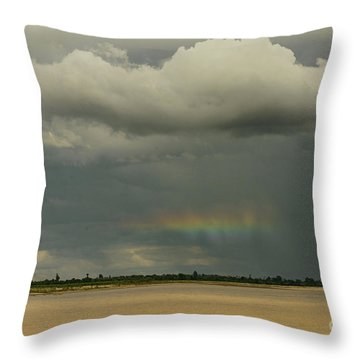 Rainbow Magic Throw Pillow