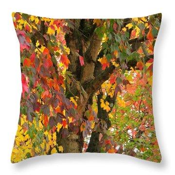 Rainbow Maple Throw Pillow