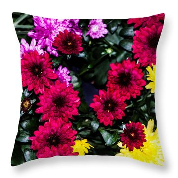 Rainbow Of Color Flowers Throw Pillow