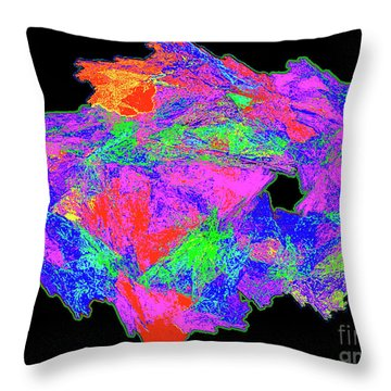Throw Pillow featuring the painting Rainbow Of Colors - Modern/contemporary Painting by Merton Allen