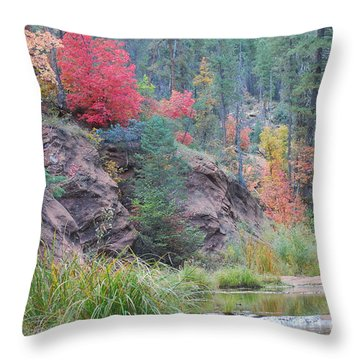 Rainbow Of The Season With River Throw Pillow by Heather Kirk