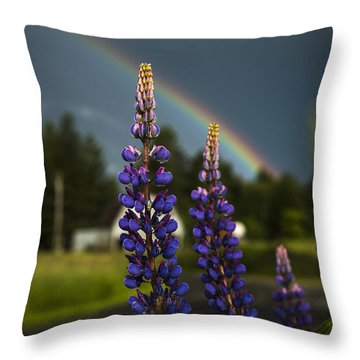 Rainbow Over Lupine  Throw Pillow