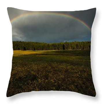 Rainbow Over The Forest Throw Pillow