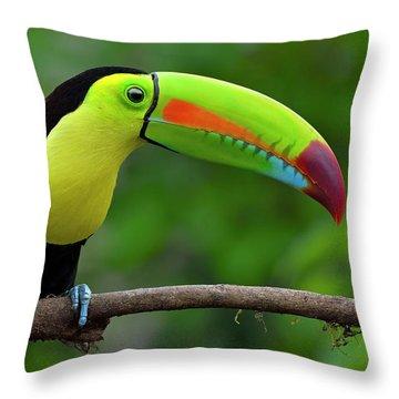 Rainbow Party Throw Pillow