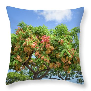 Throw Pillow featuring the photograph Rainbow Shower Tree 1 by Jim Thompson