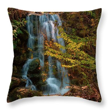 Throw Pillow featuring the photograph Rainbow Springs Waterfall by Louis Ferreira