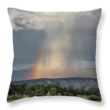 Rainbow Storm Over Log Hill Throw Pillow