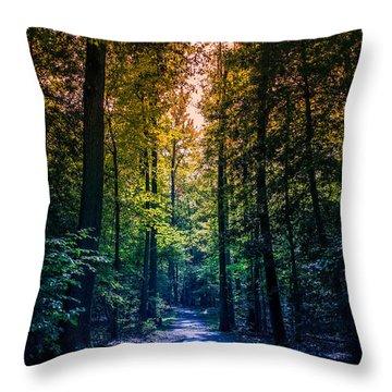 Rainbow Trail Throw Pillow